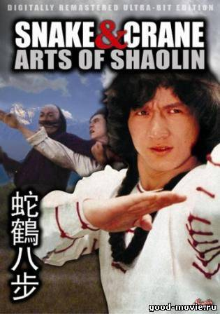 Snake and Crane Arts of Shaolin (1978) ศึกบัญญัติ 8 พญายม